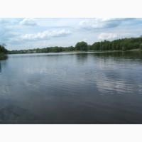 Живописное село Музычи продажа участка 12 соток на берегу озера