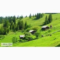 Продается хозяйство с земельным участком 400 соток в Карпатах