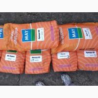 Продам семена подсолнечника недорого