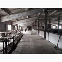Продам свиноферму в Нововодолажском районе с. Староверовке 75км. от Харькова