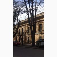 Фасадное здание в центре Одессы 800 м кв, 2 этажа, участок 10 соток
