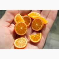 Купить цитрусовые биофлавоноиды