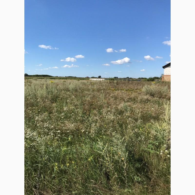 Фото 3. Хозяин продаст земельный участок в Руликове