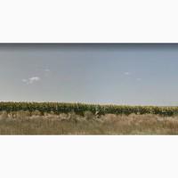 Участок 17.4га Южный(2км)/ Нефтетерминал ( 1км)