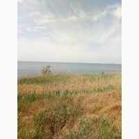 Участок на черноморском побережье