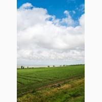 Продается фермерское хозяйство 10000 м.кв, Дебальцево