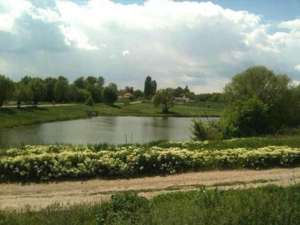 Фото 9. Дом кирпичный у озера со всеми удобствами в Пологах