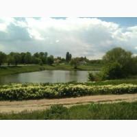 Дом кирпичный у озера со всеми удобствами в Пологах