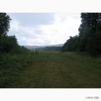 Земельный участок 4, 5га свободного назначения возле г.Черновцы