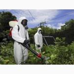 Уничтожение вредных насекомых, грызунов