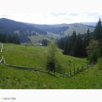 Продам участок в Карпатах - Яблуница, 10 соток под строительство
