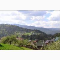 Продається земельна ділянка в с.Яремче